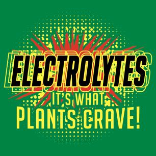 electrolytes-newthumb
